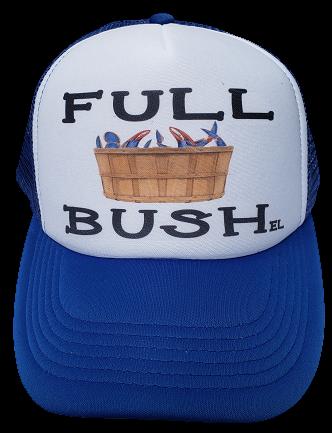 Bush full 12 Reasons